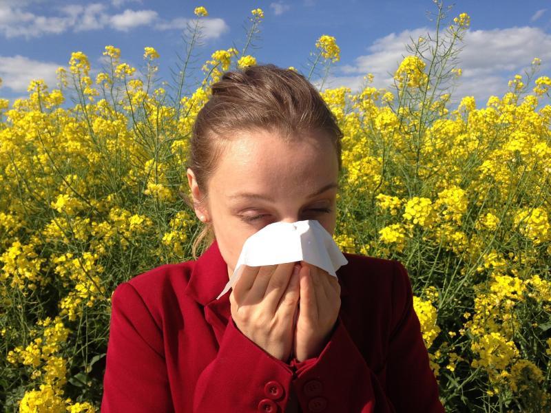 Co vás zajímalo? Jarní alergie